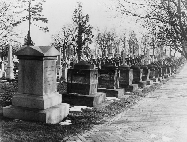 Photograph of Congressional Cemetery cenotaphs